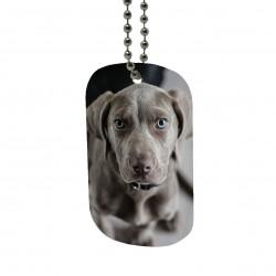 Medaglietta personalizzata per cane